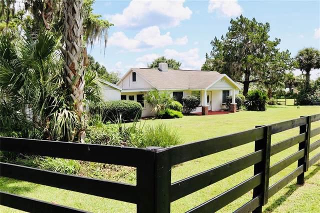 8545 West Anthony Road, Ocala, FL 34479 (MLS #OM624634) :: MavRealty