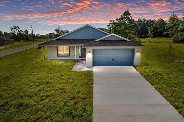 173 Malauka Loop, Ocklawaha, FL 32179 (MLS #OM624662) :: Cartwright Realty