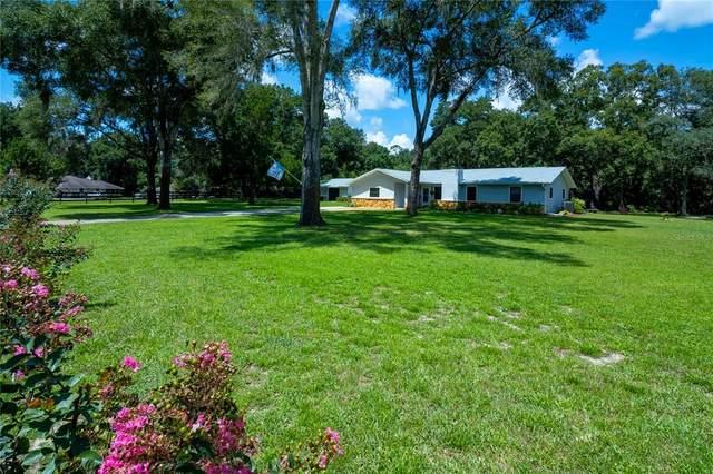 3880 NE 70TH Avenue, Silver Springs, FL 34488 (MLS #OM624701) :: Dalton Wade Real Estate Group
