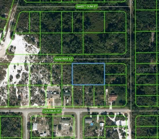 1515 Raintree Street, Lake Placid, FL 33852 (MLS #OM624735) :: Griffin Group