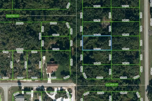 251 Marshall Avenue, Lake Placid, FL 33852 (MLS #OM624738) :: Griffin Group