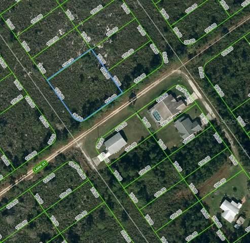 601 Bottlebrush Avenue, Lake Placid, FL 33852 (MLS #OM624744) :: Rabell Realty Group