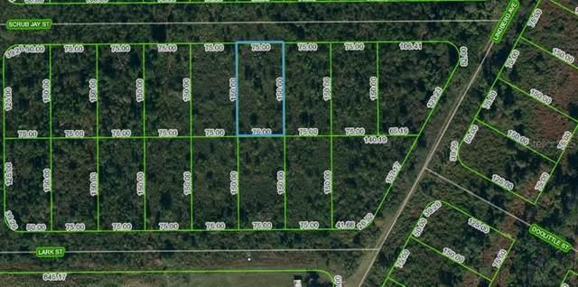1431 Scrub Jay Street, Lake Placid, FL 33852 (MLS #OM624748) :: Rabell Realty Group