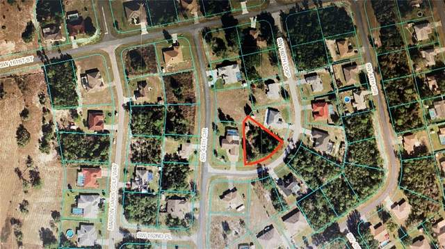 TBA SW 160 LOOP, Ocala, FL 34473 (MLS #OM624778) :: Global Properties Realty & Investments
