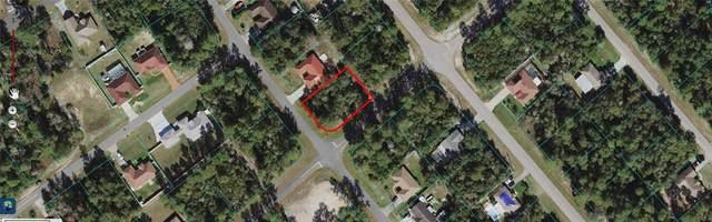 0 SW 156 Loop, Ocala, FL 34472 (MLS #OM624802) :: Global Properties Realty & Investments