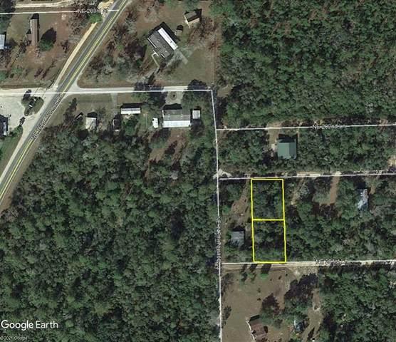 NE 202ND Place, Fort Mc Coy, FL 32134 (MLS #OM624829) :: The Hesse Team