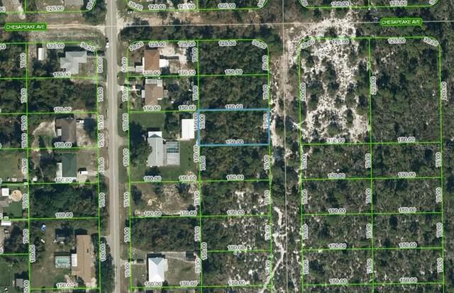 252 Sandpiper Street, Lake Placid, FL 33852 (MLS #OM624830) :: Visionary Properties Inc