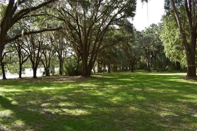 131 Lake Susan Road, Hawthorne, FL 32640 (MLS #OM624832) :: The Hustle and Heart Group