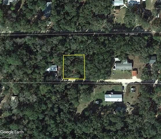 14449 NE 188TH Place, Fort Mc Coy, FL 32134 (MLS #OM624833) :: Team Turner