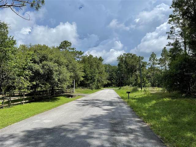 0 SW 71 Place, Dunnellon, FL 34431 (MLS #OM624864) :: Visionary Properties Inc