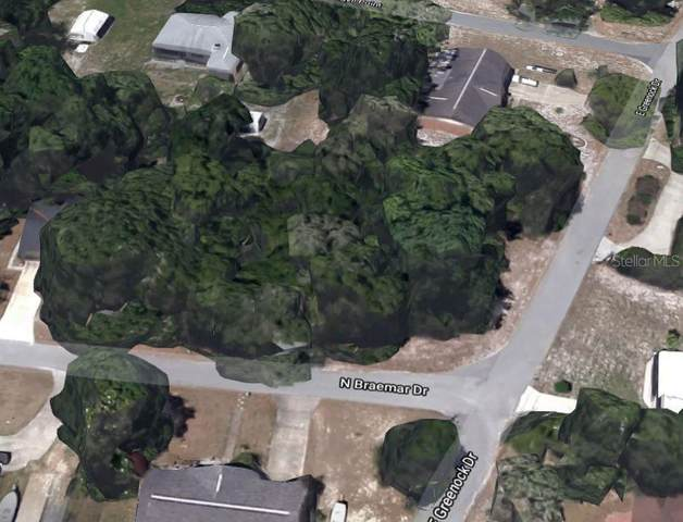 306 N Braemar Drive, Inverness, FL 34450 (MLS #OM624870) :: Young Real Estate