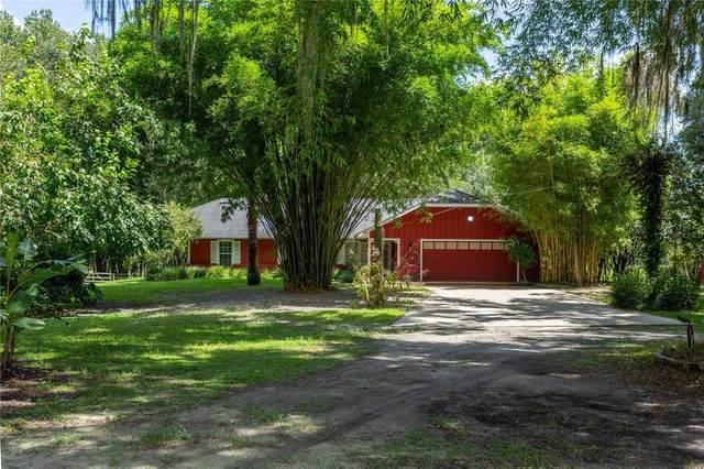 5191 E Highway 316, Citra, FL 32113 (MLS #OM624879) :: Everlane Realty