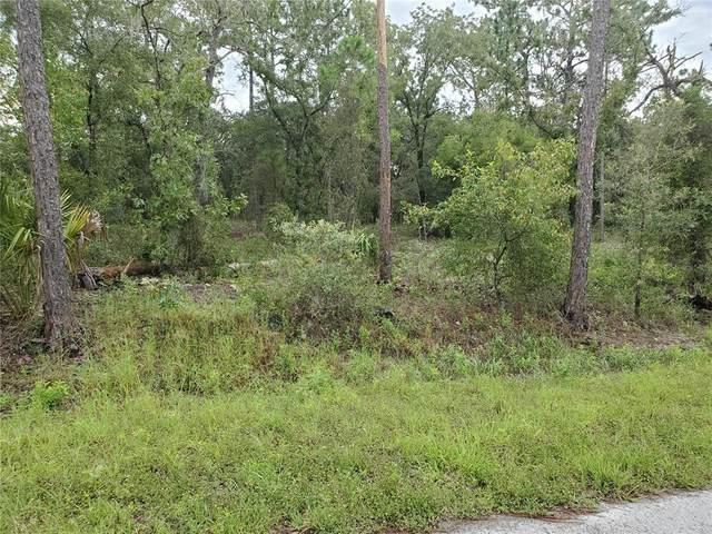 Dunnellon, FL 34431 :: Everlane Realty