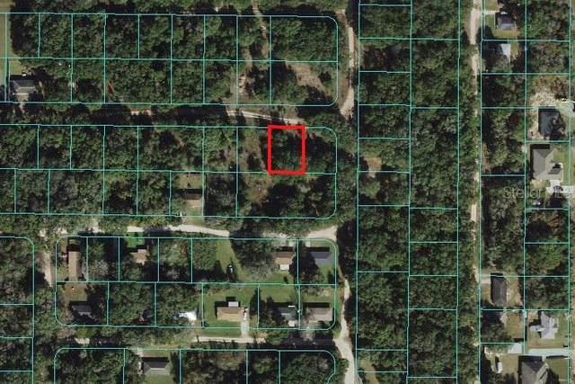 5788 NW 12TH Street, Ocala, FL 34482 (MLS #OM624893) :: Premium Properties Real Estate Services