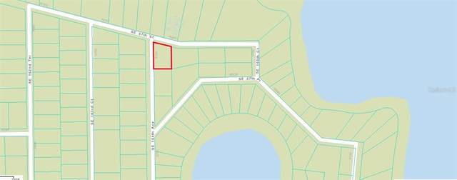 SE 164TH Avenue, Ocklawaha, FL 32179 (MLS #OM624917) :: Keller Williams Realty Peace River Partners
