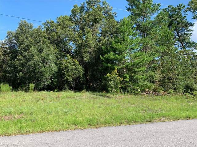 TBD SW 55TH COURT Road, Ocala, FL 34473 (MLS #OM624942) :: Young Real Estate
