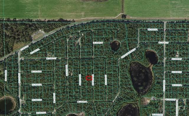 NE 113TH Terrace, Fort Mc Coy, FL 32134 (MLS #OM625004) :: Gate Arty & the Group - Keller Williams Realty Smart