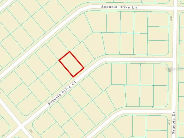 0 Sequoia Drive Court, Ocklawaha, FL 32179 (MLS #OM625009) :: Gate Arty & the Group - Keller Williams Realty Smart