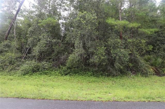 00 SW 29 TERRACE ROAD Terrace SW, Ocala, FL 34473 (MLS #OM625028) :: RE/MAX Elite Realty