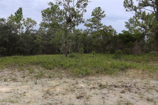 10418 N Spaulding Drive, Citrus Springs, FL 34433 (MLS #OM625037) :: Everlane Realty