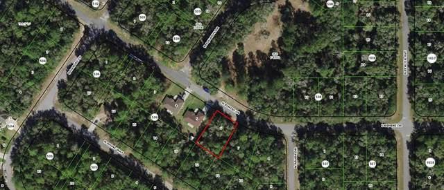 78 W Bimini Drive, Citrus Springs, FL 34434 (MLS #OM625049) :: Everlane Realty