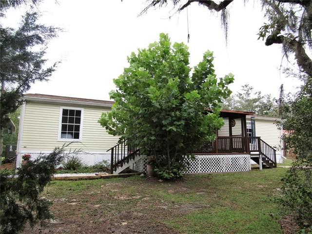 5341 W Stargazer Lane, Dunnellon, FL 34433 (MLS #OM625073) :: Everlane Realty