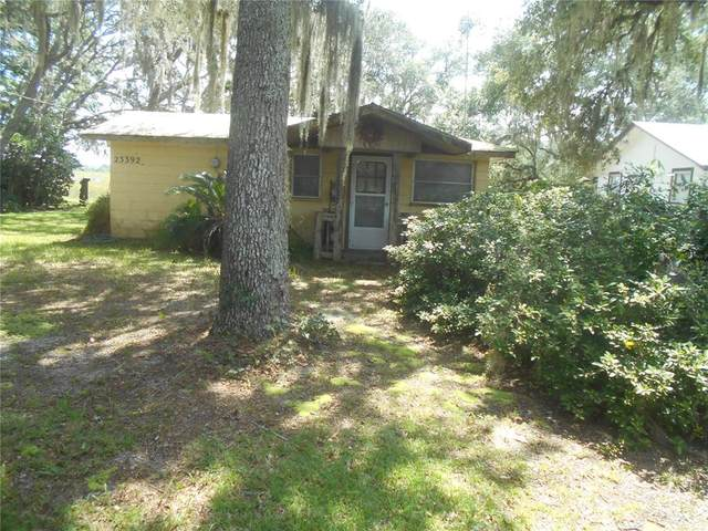 23392 NE 154TH PLACE Road S, Salt Springs, FL 32134 (MLS #OM625156) :: Delgado Home Team at Keller Williams
