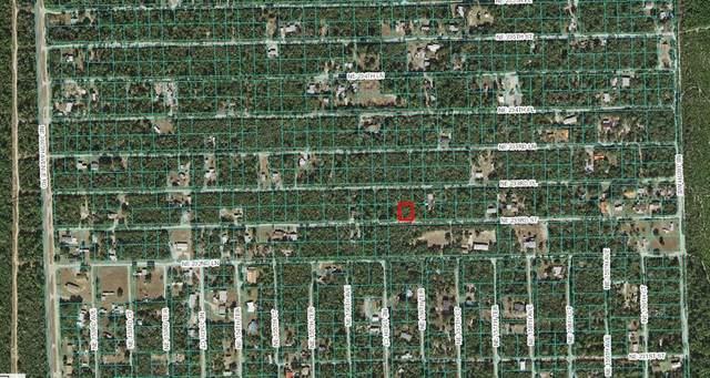 LOT 12 NE 233RD Street, Fort Mc Coy, FL 32134 (MLS #OM625218) :: The Hustle and Heart Group
