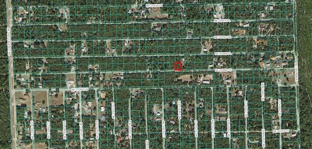 LOT 13 NE 233RD Street, Fort Mc Coy, FL 32134 (MLS #OM625219) :: The Hustle and Heart Group