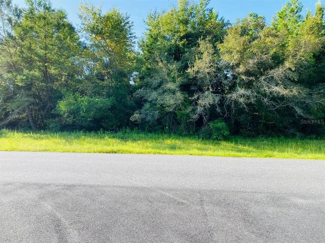0 Sw 145Th Place Rd, Ocala, FL 34473 (MLS #OM625247) :: The Paxton Group