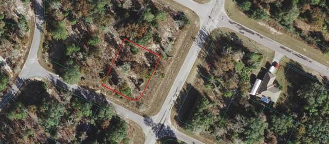 0 Malauka Radial Terrace, Ocklawaha, FL 32179 (MLS #OM625299) :: Realty Executives