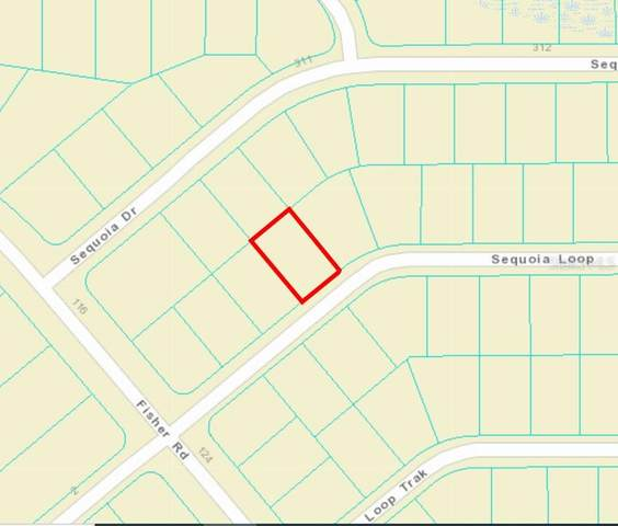Sequoia Loop, Ocklawaha, FL 32179 (MLS #OM625329) :: Gate Arty & the Group - Keller Williams Realty Smart