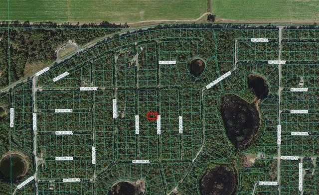 NE 113TH Terrace, Fort Mc Coy, FL 32134 (MLS #OM625622) :: Gate Arty & the Group - Keller Williams Realty Smart
