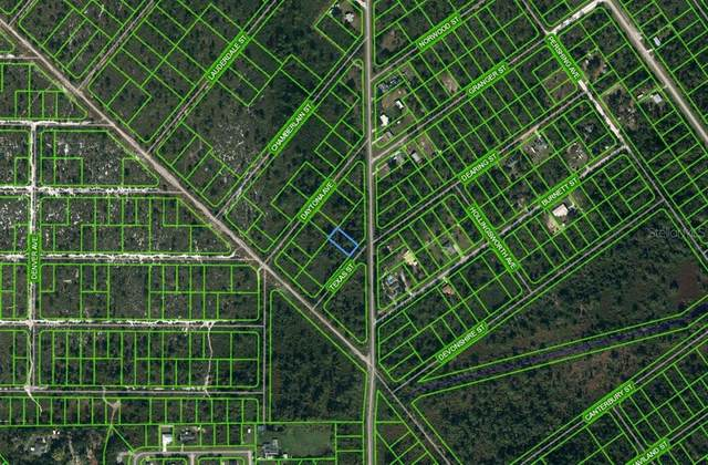 608 Texas Street, Lake Placid, FL 33852 (MLS #OM625673) :: Everlane Realty