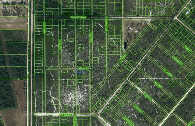683 Scarlet Oak Street, Lake Placid, FL 33852 (MLS #OM625674) :: Everlane Realty