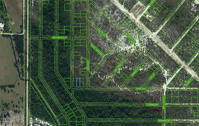 504 Nevada Avenue, Lake Placid, FL 33852 (MLS #OM625687) :: Everlane Realty