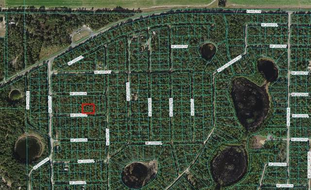 NE 237TH Place, Fort Mc Coy, FL 32134 (MLS #OM625791) :: Gate Arty & the Group - Keller Williams Realty Smart