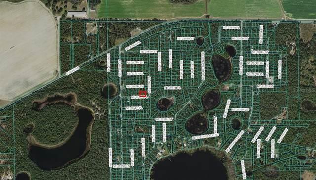 NE 236TH Place, Fort Mc Coy, FL 32134 (MLS #OM625801) :: Gate Arty & the Group - Keller Williams Realty Smart
