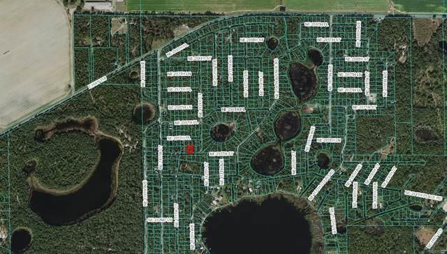 NE 235TH Street, Fort Mc Coy, FL 32134 (MLS #OM625802) :: Gate Arty & the Group - Keller Williams Realty Smart