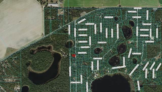 NE 110TH Court, Fort Mc Coy, FL 32134 (MLS #OM625813) :: Everlane Realty