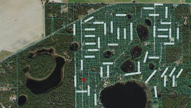 NE 110TH Court, Fort Mc Coy, FL 32134 (MLS #OM625825) :: Gate Arty & the Group - Keller Williams Realty Smart