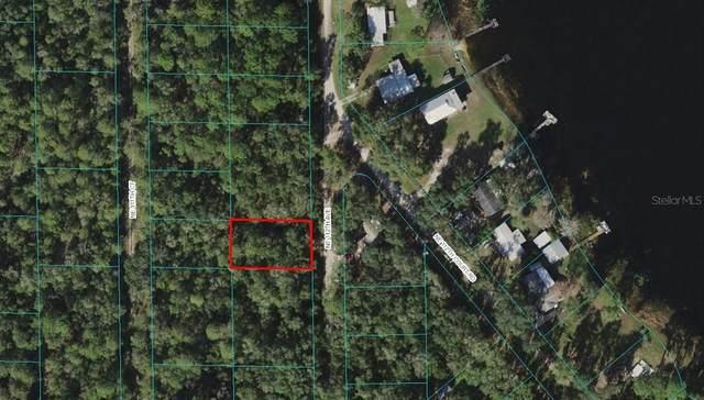 NE 112TH Avenue, Fort Mc Coy, FL 32134 (MLS #OM625845) :: Gate Arty & the Group - Keller Williams Realty Smart