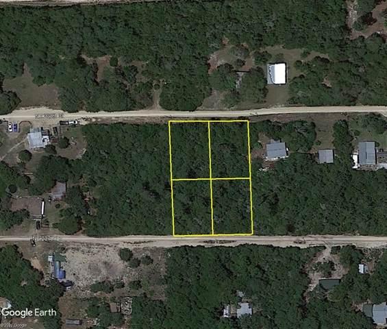 NE 238TH Street, Fort Mc Coy, FL 32134 (MLS #OM625871) :: Everlane Realty