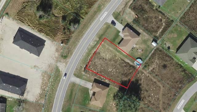 8093 SE Juniper Road, Ocala, FL 34480 (MLS #OM625907) :: Premium Properties Real Estate Services