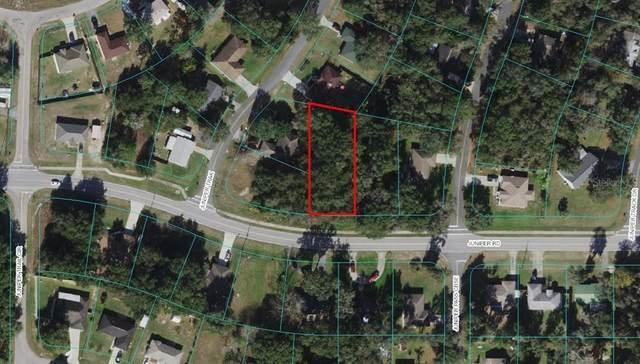 SE Juniper Road, Ocala, FL 34480 (MLS #OM625913) :: Zarghami Group