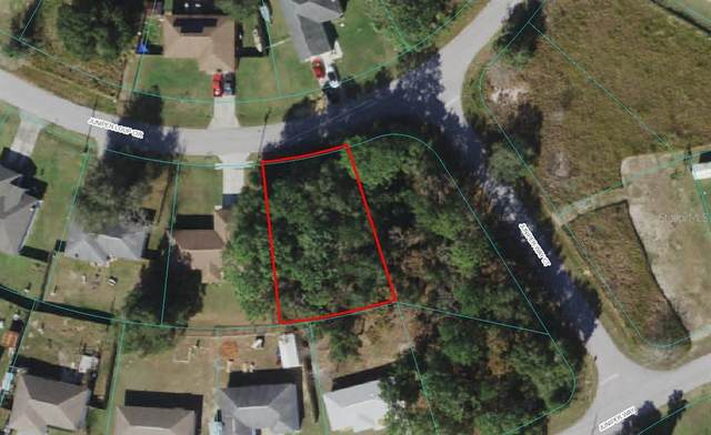 SE Juniper Loop Circle, Ocala, FL 34480 (MLS #OM625919) :: Premium Properties Real Estate Services