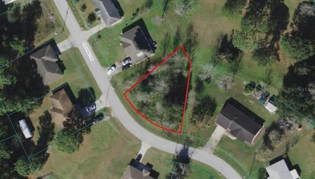 SE Chestnut Drive, Ocala, FL 34480 (MLS #OM625920) :: Premium Properties Real Estate Services