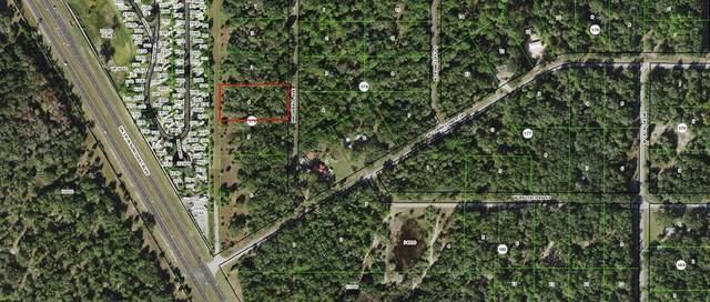9900 N Snowball Point, Crystal River, FL 34428 (MLS #OM626094) :: Everlane Realty