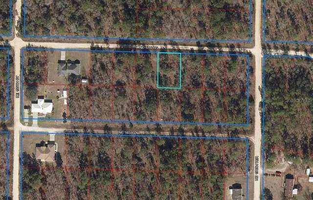 15650 NE 17TH Place, Williston, FL 32696 (MLS #OM626218) :: Zarghami Group