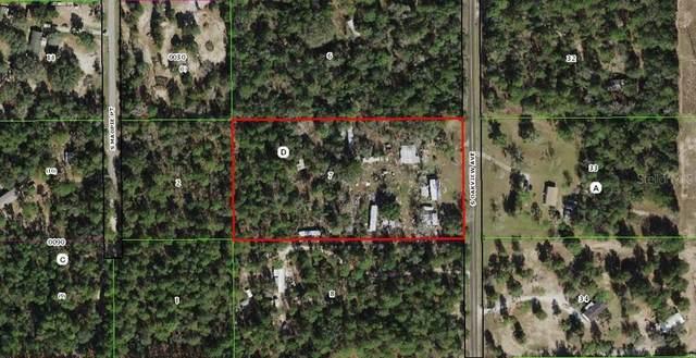 12400 S Oakview Avenue, Floral City, FL 34436 (MLS #OM626245) :: Zarghami Group